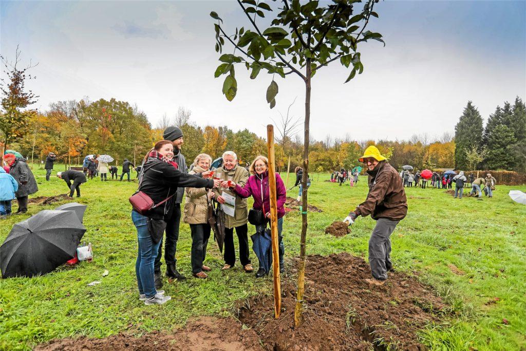 Der Mengeder Heimatwald liegt am Rande des Volksgartens. Hier pflanzten viele Menschen einst ihre eigenen Bäume, die für sie jetzt als Zeichen der Erinnerung stehen.