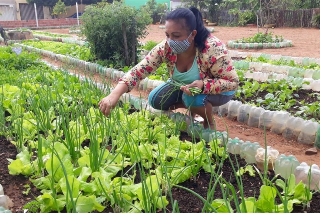 Mithilfe eines Förderprojektes können Familien eigene Gemüsegärten anlegen. Damit können sie sich selbst versorgen und noch ein bisschen Geld verdienen.