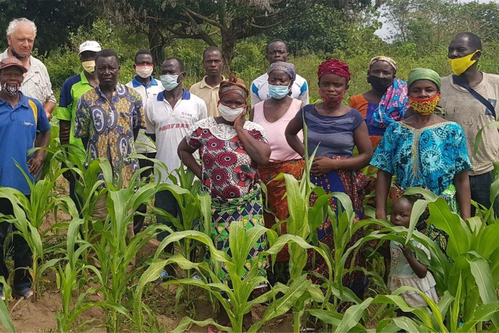 Feldbegehung: Durch das erste Projekt konnte der Maisertrag deutlich gesteigert werden. Hermann Schulze Herking baut die Unterstützung der Landwirtschaft in Togo nun nachhaltig aus.