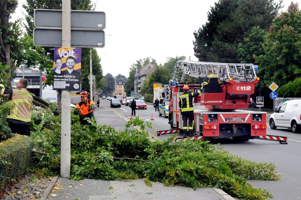 Die Polizei leitete den Verkehr auf der B236 einspurig an der Unfallstelle vorbei, während die Feuerwehr den vom Aufprall gespalteten Baum vor dem Medical Center absägte.