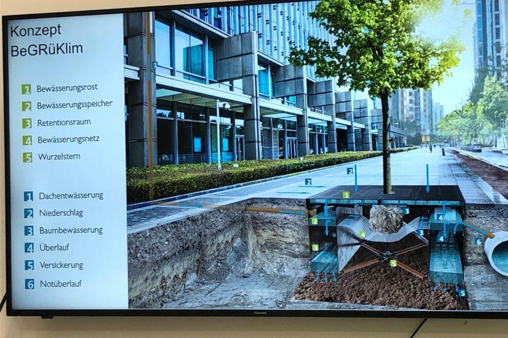 Helmut Grüning stellte der Castrop-Rauxeler Delegation sein Forschungsprojekt vor. Dazu gehört die Baumrigole. Sie kann Wasser speichern, wenn es zu viel davon gibt, und Wasser abgeben, wenn dem Baum Trockenheit droht.