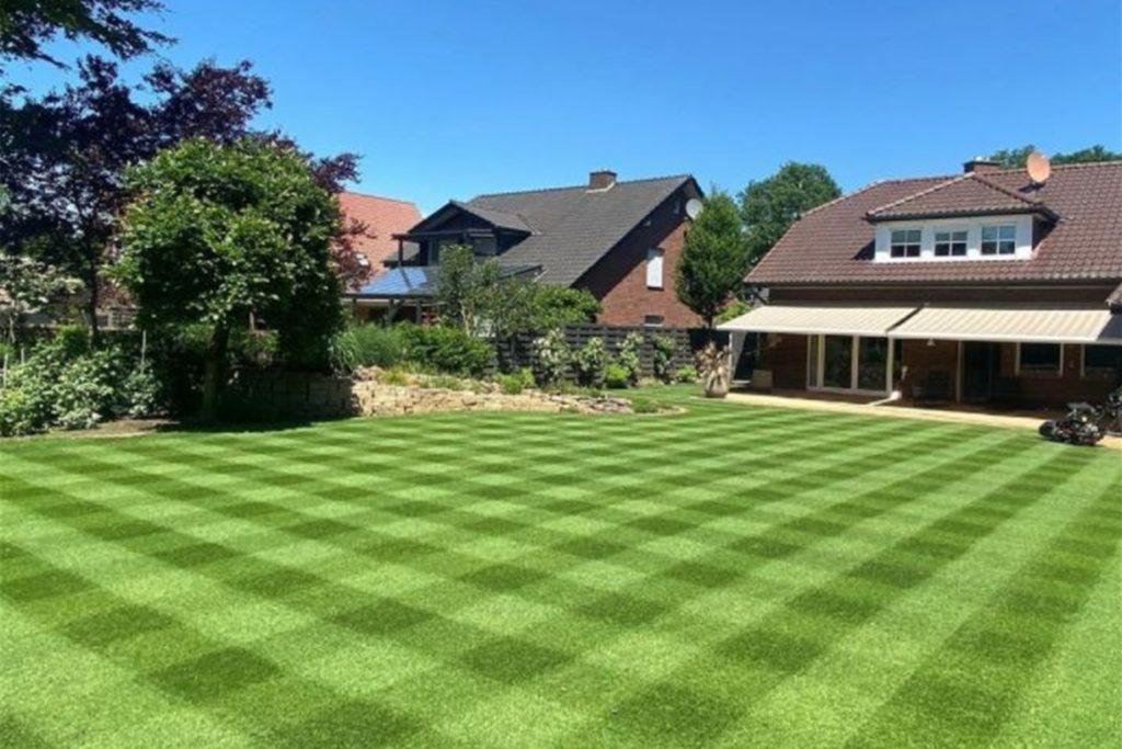 Wenn Matthias Merten seinen Rasen auf wenige Millimeter Länge kürzt, sind auch aufwendige Muster wie dieses Karo möglich. Dafür müssen allerdings Wetter- und Pflegebedingungen passen.